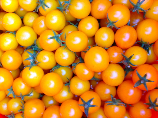 the Ledson's Family CSA Farm Cherry Tomatoes